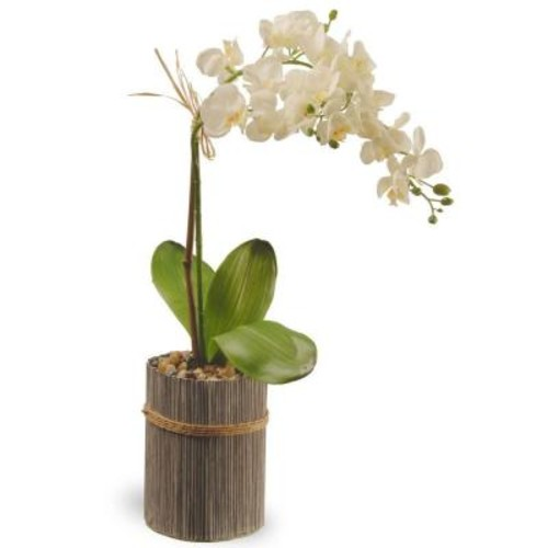 National Tree Company 20 in. Garden Accents Potted Orchid