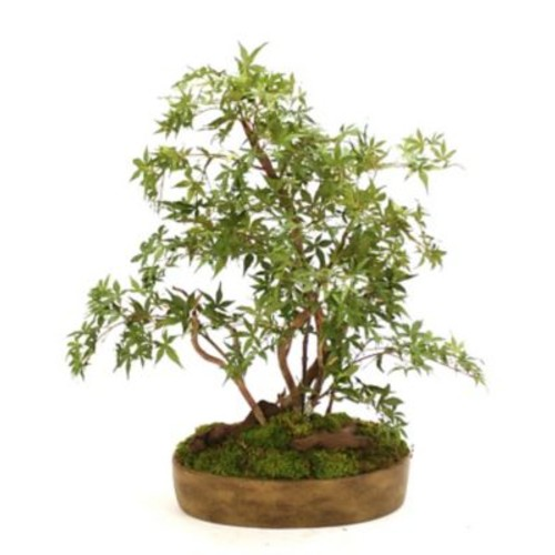 Distinctive Designs Silk Japanese Bonsai Tree Desk Top Plant in Tray