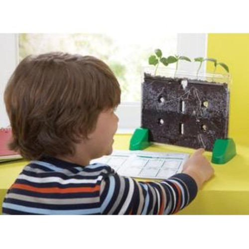 Educational Insights Sprout & Grow Window with Wondersoil