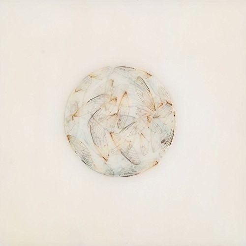 Off White [LP] - VINYL