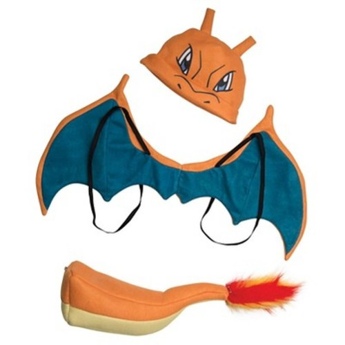 Kids' Pokemon Charizard Costume