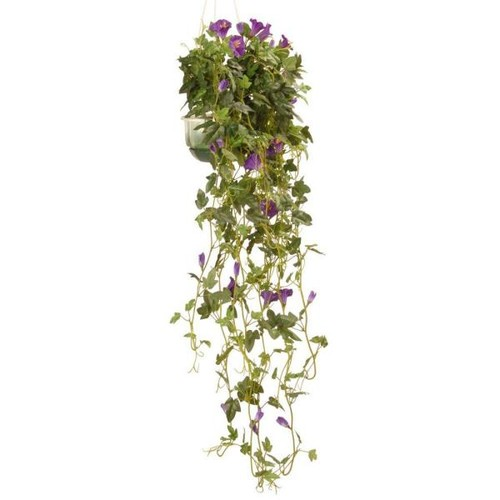 National Tree Company 25 in. Garden Accents Petunia Plant