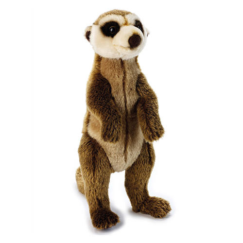 National Geographic Lelly Plush - Meerkat