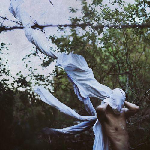 Vin Ploile [LP] - VINYL