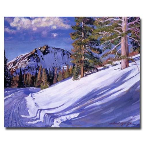 Trademark Fine Art 'Snow Mountain Road' 35