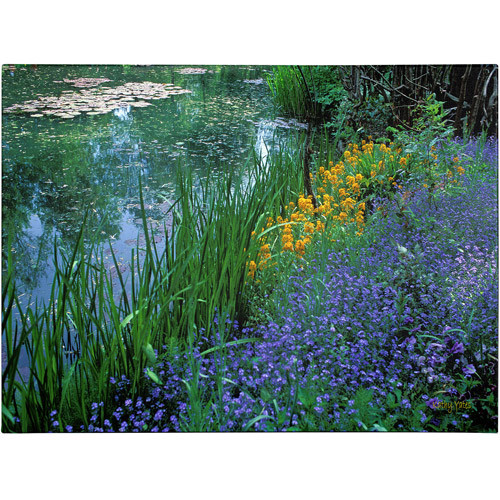 Monet's Lily Pond by Kathy Yates, 14x19-Inch Canvas Wall Art [14x19-Inch]