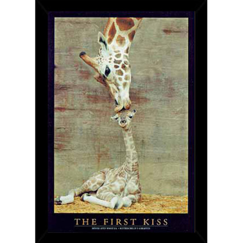 First Kiss (24-inch x 36-inch) with Contemporary Poster Frame