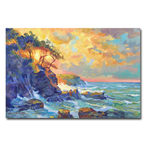 'Pacific Dawn' by David Lloyd Glover Framed Painting Print on Wrapped Canvas