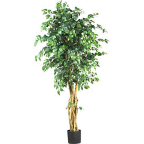Nearly Natural Artificial Plants Kentia 5-foot Silk Tree