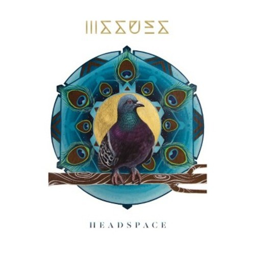 Headspace - Issues