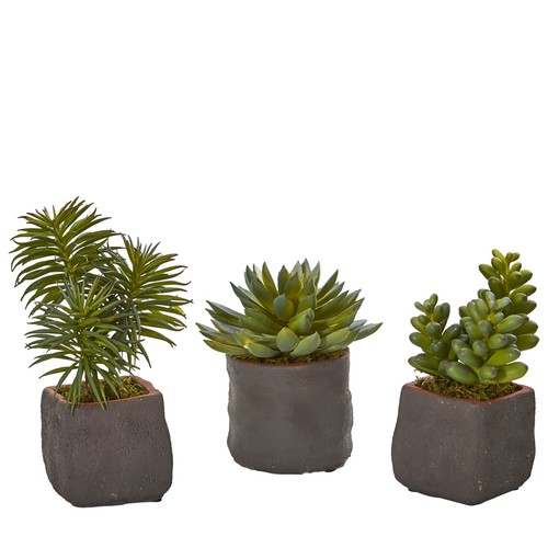 Mixed Succulent Trio by Nearly Natural