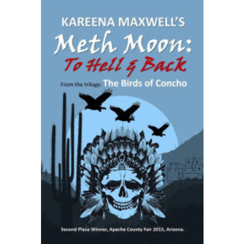 Meth Moon: To Hell & Back (Native American Fiction)