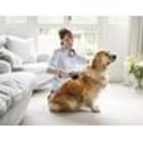 Dyson Pet Grooming Tool Accessory attachment for Dyson vacuum cleaner