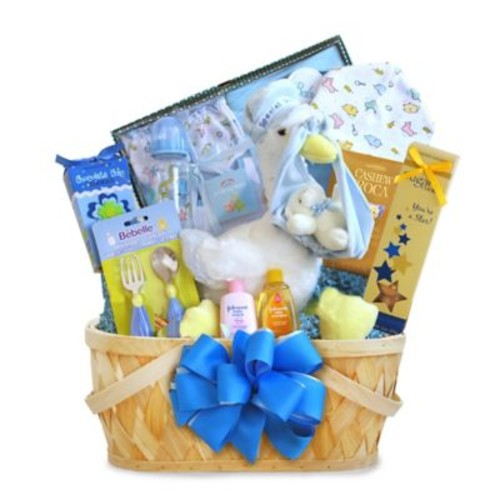 Special Delivery Baby Boy Stork Basket