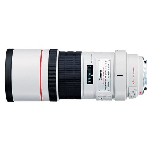 Canon EF 300mm f/4L IS USM Telephoto Fixed Lens for Canon SLR Cameras [300mm f/4L]