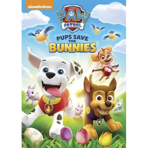 Paw Patrol: Spring into Action (DVD)