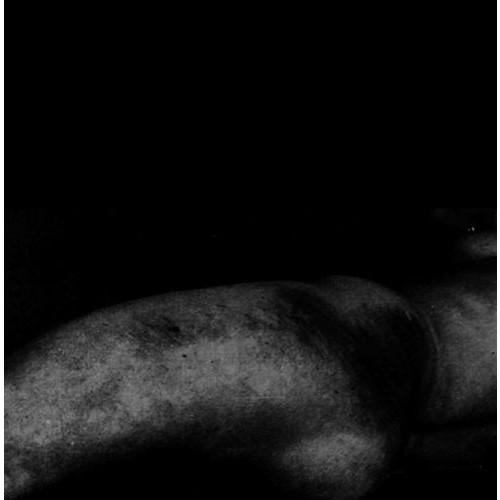 Dead Body Love/Atrax Morgue [LP] - VINYL