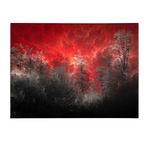 Trademark Fine Art Philippe Sainte-Laudy 'Hot and Cold' Canvas Art 22x32 Inches