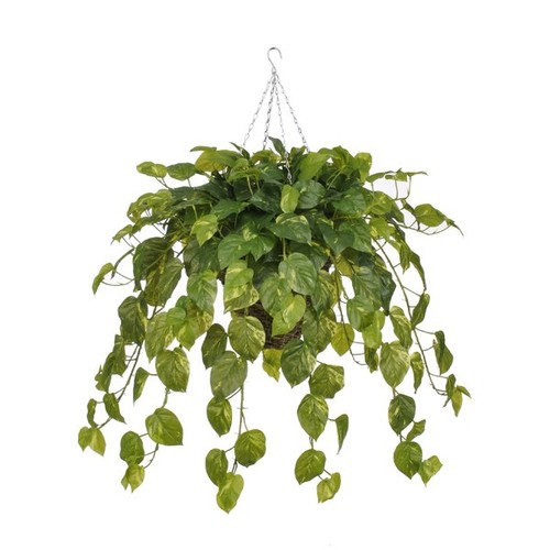 Artificial Real Touch Pothos Hanging Plant in Square Basket