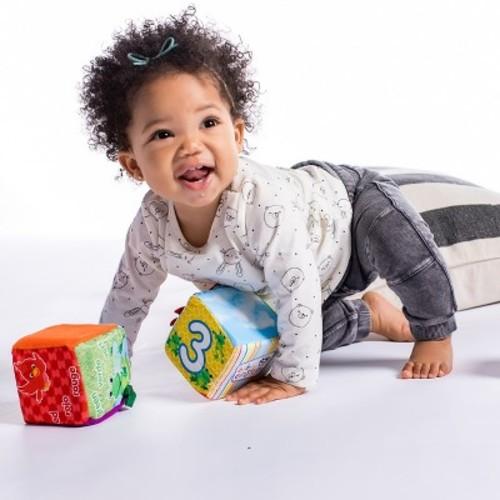 Baby Einstein Explore & Discover Soft Blocks