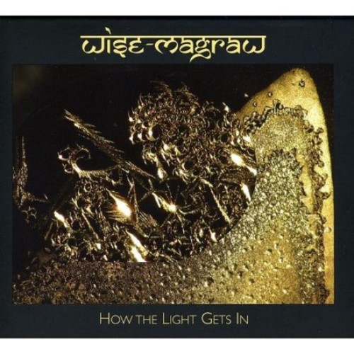 How the Light Gets In [CD]
