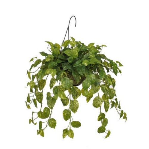 House of Silk Flowers Inc. Artificial Real Touch Pothos Hanging Plant in Basket