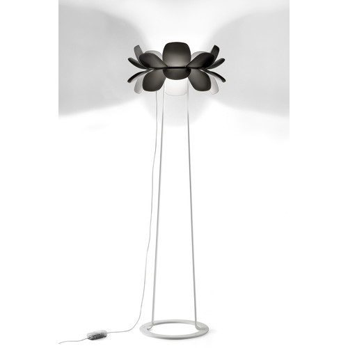 Infiore Floor Lamp [Lamp Type : P-5809 - Halogen]