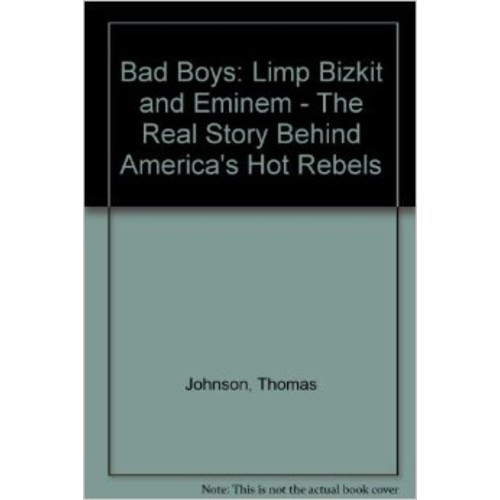 Bad Boys: The Real Story Behind America's Hot Rebels