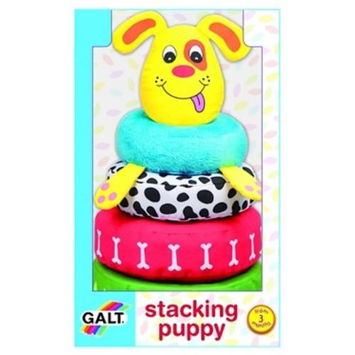 Galt Stacking puppy