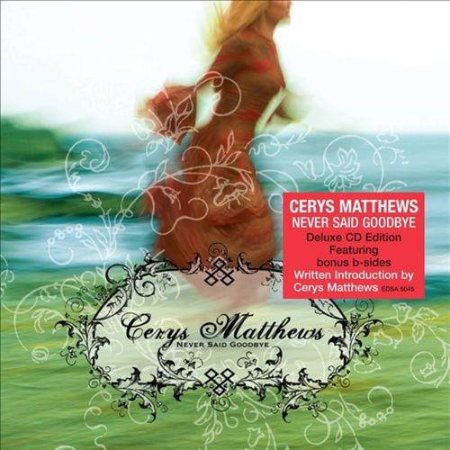 Never Said Goodbye [CD]