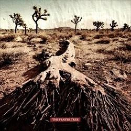 The Prayer Tree [CD]
