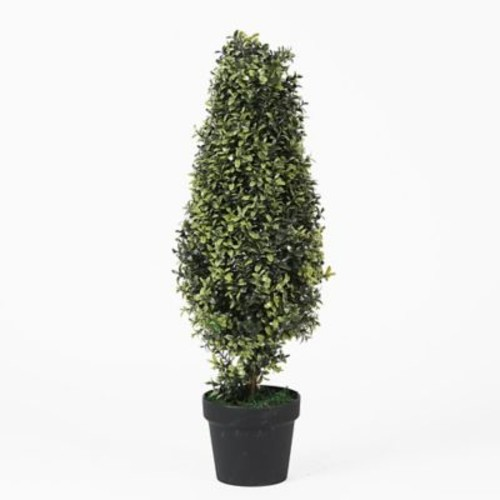 Darby Home Co Orchid Tree Topiary in Pot