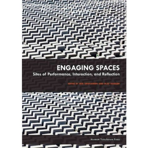 Engaging Spaces: Sites of Performance, Interaction and Reflection (Paperback)
