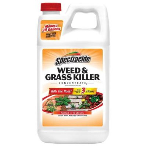 Spectracide Weed and Grass Killer 64 oz. Concentrate