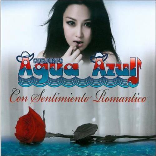 Con Sentimiento Romantico [CD]
