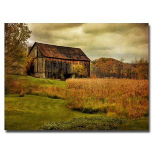 Trademark Global 'Old Barn on Rainy Day' by Lois Bryan Photographic Print on Canvas Size: 16