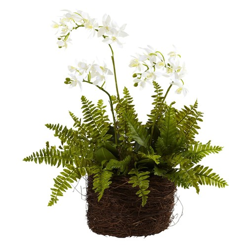 nearly natural Mini Phalaenopsis & Fern Bird's Nest Planter