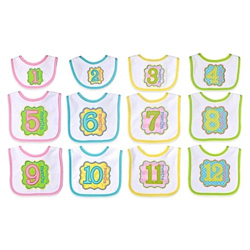 Neat Solutions 12-Piece Monthly Milestone Bib Set in Pink/Yellow