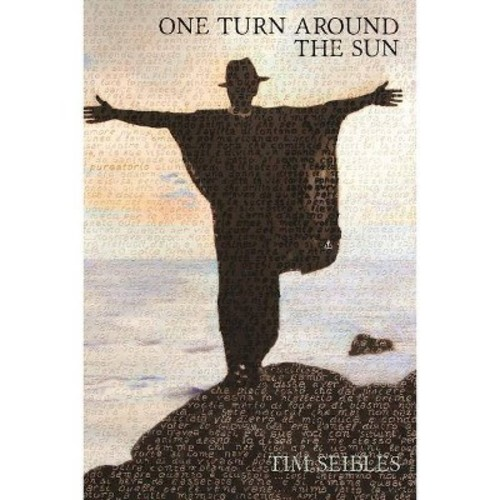 One Turn Around the Sun (Paperback)