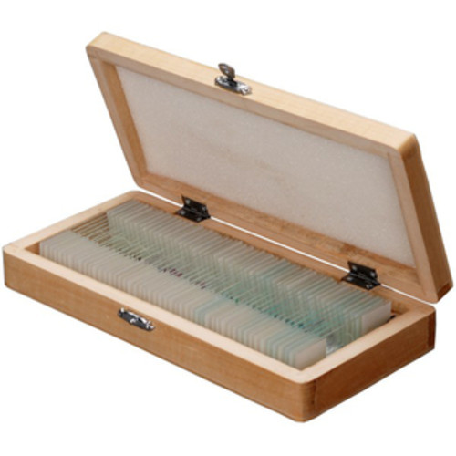 100 PC Prepared Microscope Glass Slides - Set B