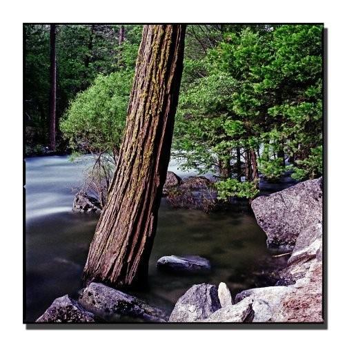 Yosemite I by Preston, 24x24-Inch Canvas Wall Art [24 by 24-Inch]