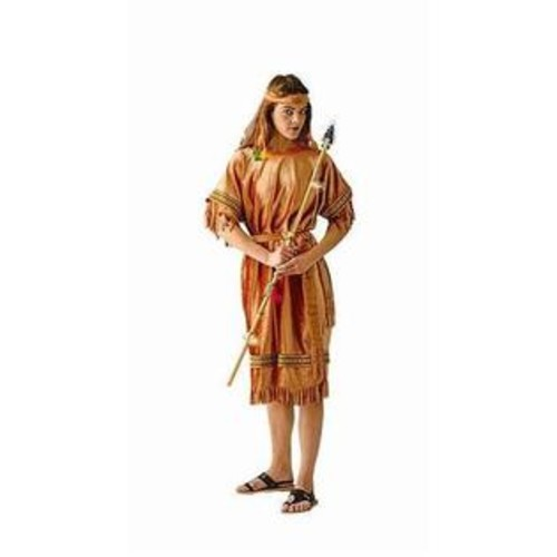 RGCostume Costume 81060 Adult Female Indian Maiden-std Adult - One Size