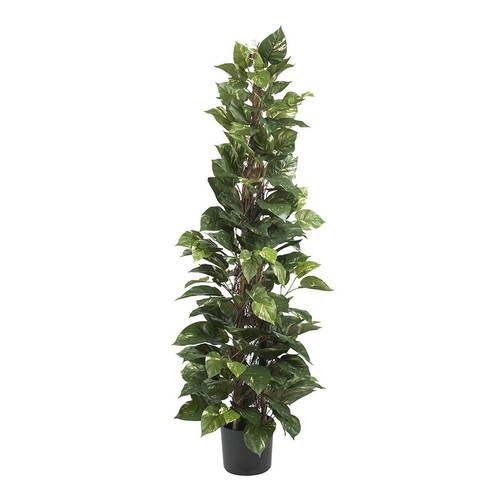 Nearly Natural 63 in. Pothos Climbing Silk Plant