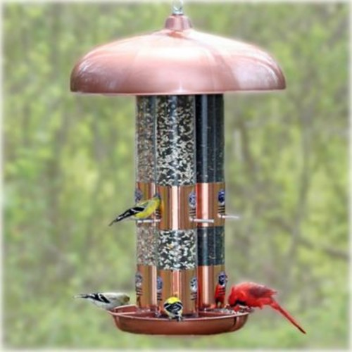 Perky Pet Perky-Pet Bird Feeder