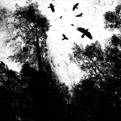 Autumn's Dawn [LP] - VINYL