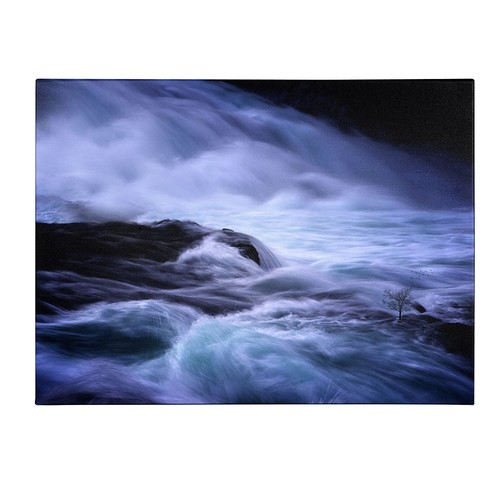 Distractions by Philippe Sainte-Laudy, 14x19-Inch Canvas Wall Art [14 by 19-Inch]