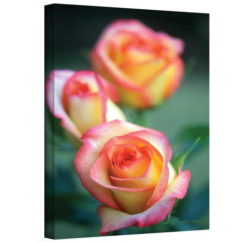 Kathy Yates 'Rose Trio' Canvas Art