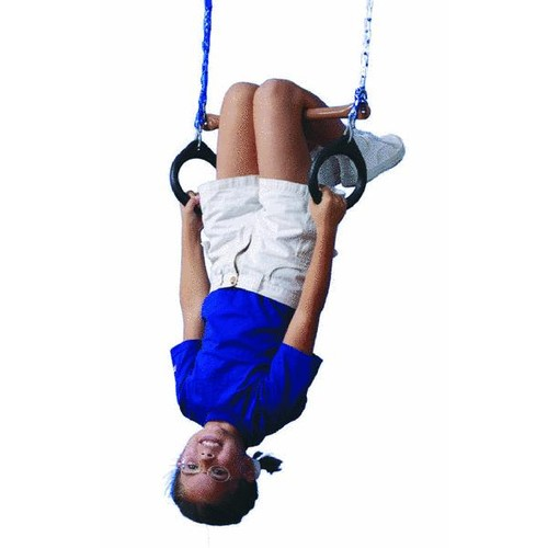 Swing N Slide Ring & Trapeze Combination - NE4488