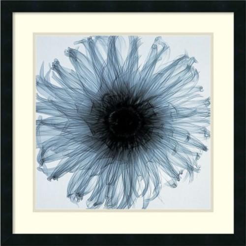Framed Art Print 'Dahlia' by Steven N. Meyers 25 x 25-inch