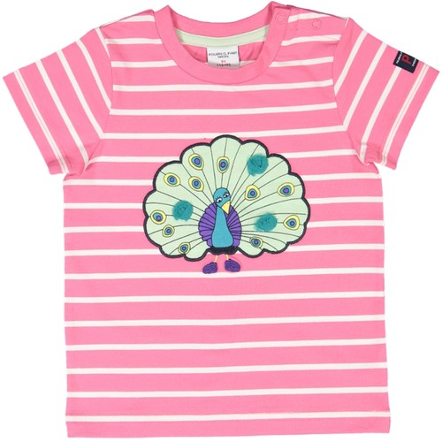 STRIPEY BUDDY ECO T (BABY)